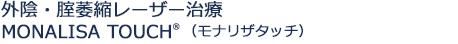 外陰・腟萎縮レーザー治療MONALISA TOUCH(モナリザタッチ)